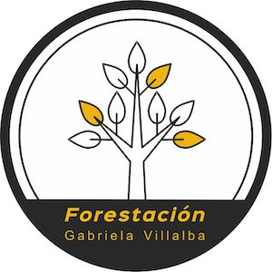 Re Forestación